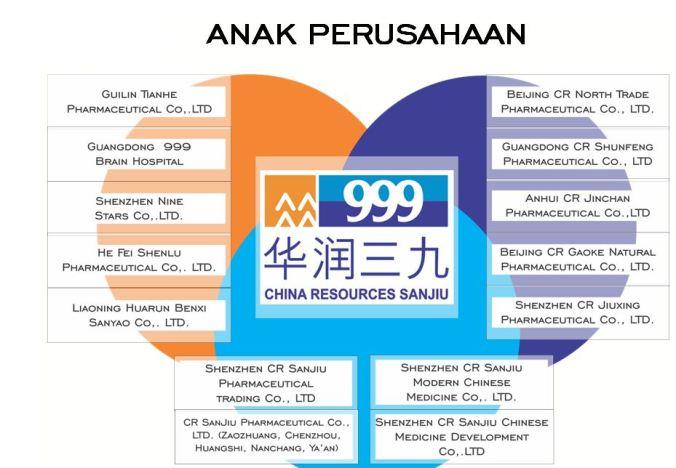 anak perusahaan 999